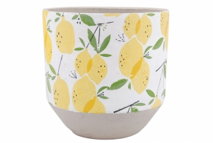POT LEMON 24CM
