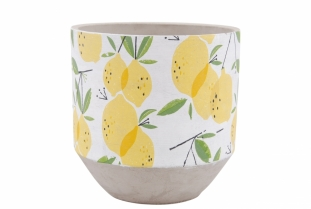 POT LEMON 21CM