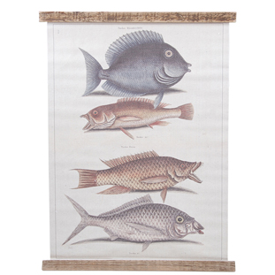 WALL PICTURE TANG FISH 49.5X67CM