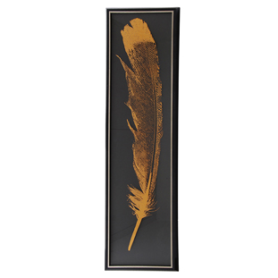 PICTURE FEATHER  STRIPE 3
