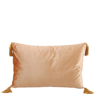 CUSHION COVER ASHLEY 40X60CM CHAMPANGE