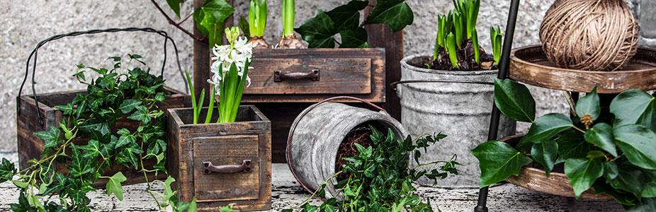 pots krukor trädgård inspo ss18